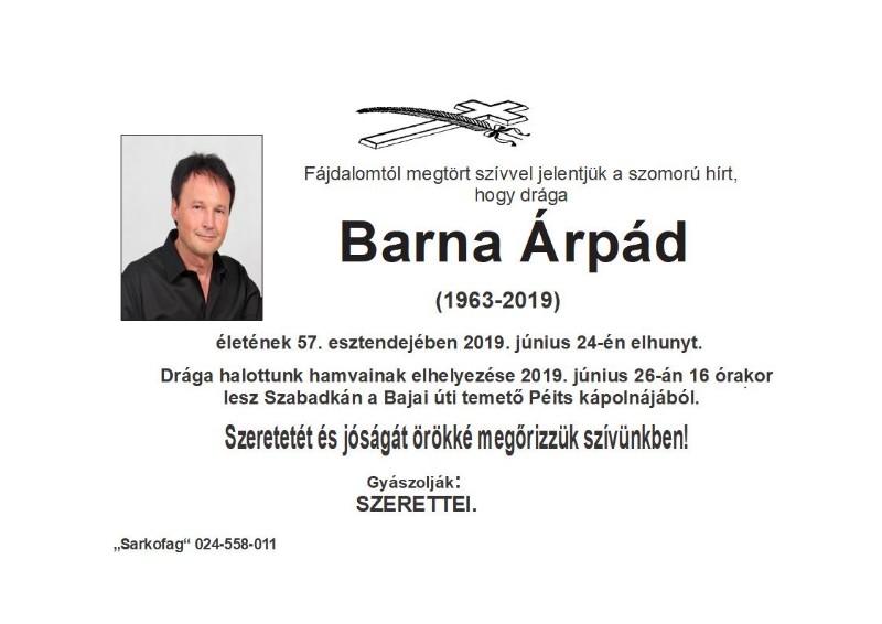 BARNA ARPAD 1