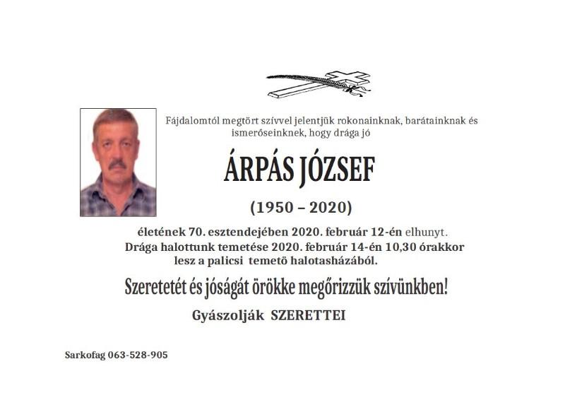 ARPAŠ JOŽEF -PALIĆ